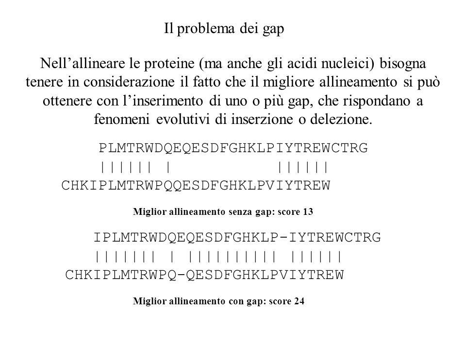 Il problema dei gap Nellallineare le proteine (ma anche gli acidi nucleici) bisogna tenere in considerazione il fatto che il migliore allineamento si