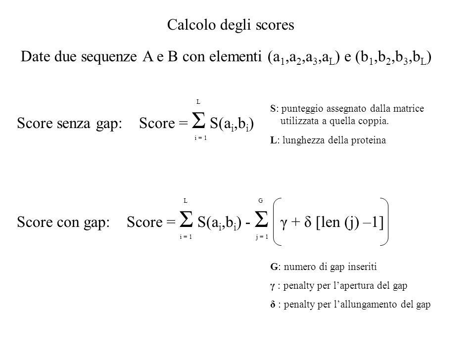 Calcolo degli scores L Score senza gap: Score = Σ S(a i,b i ) i = 1 S: punteggio assegnato dalla matrice utilizzata a quella coppia. L: lunghezza dell