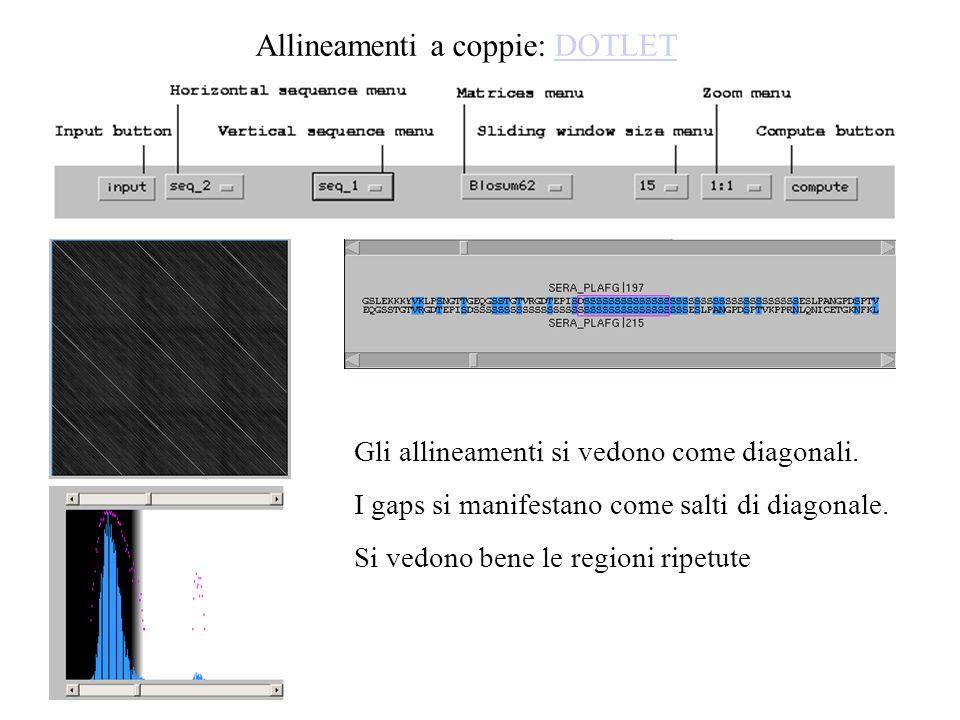 Gli allineamenti si vedono come diagonali. I gaps si manifestano come salti di diagonale. Si vedono bene le regioni ripetute Allineamenti a coppie: DO
