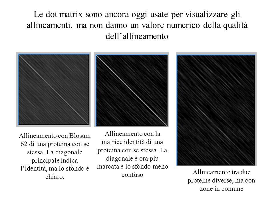 Le dot matrix sono ancora oggi usate per visualizzare gli allineamenti, ma non danno un valore numerico della qualità dellallineamento Allineamento co