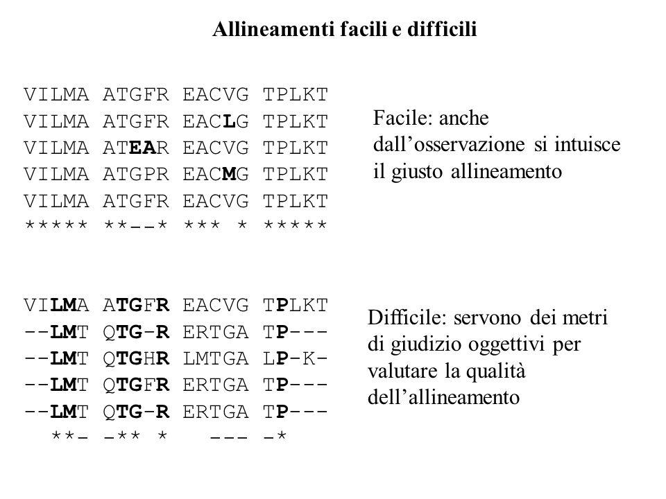 Allineamenti facili e difficili VILMA ATGFR EACVG TPLKT VILMA ATGFR EACLG TPLKT VILMA ATEAR EACVG TPLKT VILMA ATGPR EACMG TPLKT VILMA ATGFR EACVG TPLK