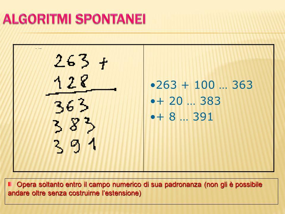 Opera soltanto entro il campo numerico di sua padronanza (non gli è possibile andare oltre senza costruirne lestensione) 263 + 100 … 363 + 20 … 383 +