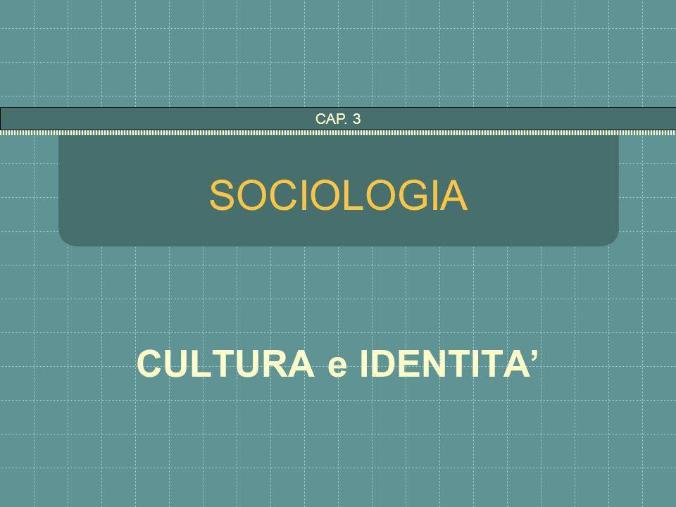 SOCIOLOGIA CULTURA e IDENTITA CAP. 3