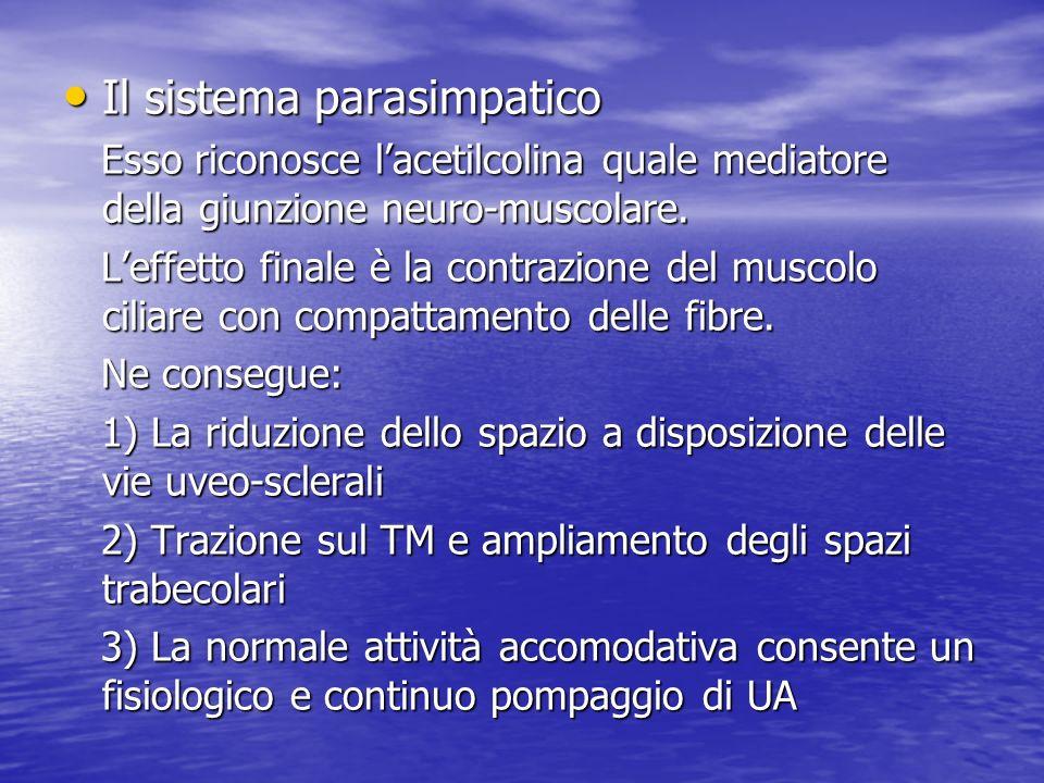 I farmaci parasimpaticomimetici si dividono in: Diretti (colinergici): Pilocarpina, Aceclidina, Carbacolo Indiretti (anticolinesterasici): Bromuro di demecario, fisostigmina, ecotiophato ioduro
