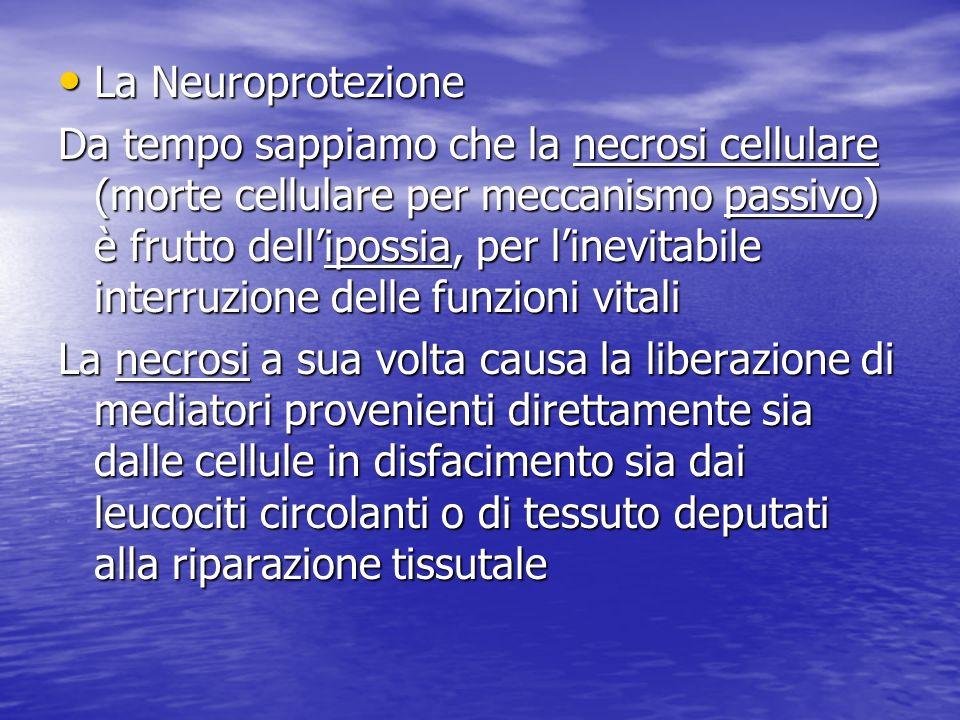 La Neuroprotezione La Neuroprotezione Da tempo sappiamo che la necrosi cellulare (morte cellulare per meccanismo passivo) è frutto dellipossia, per li