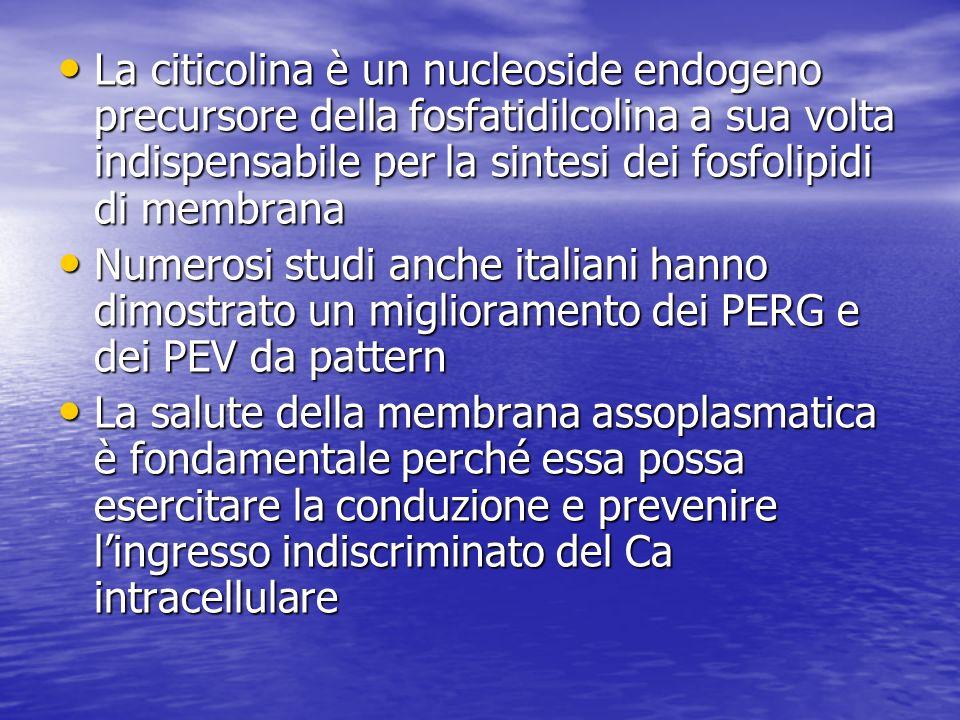 La citicolina è un nucleoside endogeno precursore della fosfatidilcolina a sua volta indispensabile per la sintesi dei fosfolipidi di membrana La citi