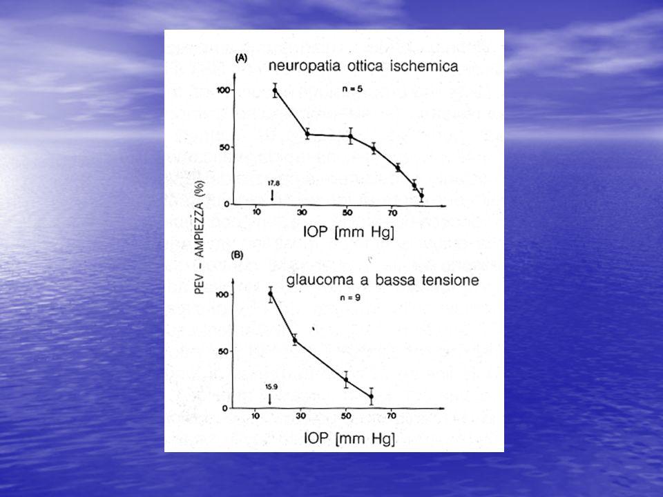 Figura 3 - Pillunat et al., Exp.Eye Res.