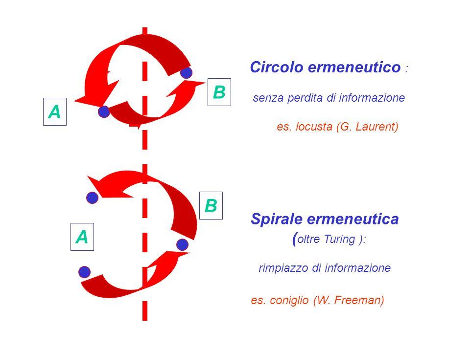 A A B B Circolo ermeneutico : senza perdita di informazione Spirale ermeneutica ( oltre Turing ): rimpiazzo di informazione es. locusta (G. Laurent) e