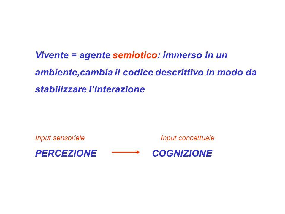 Vivente = agente semiotico: immerso in un ambiente,cambia il codice descrittivo in modo da stabilizzare linterazione Input sensoriale Input concettual