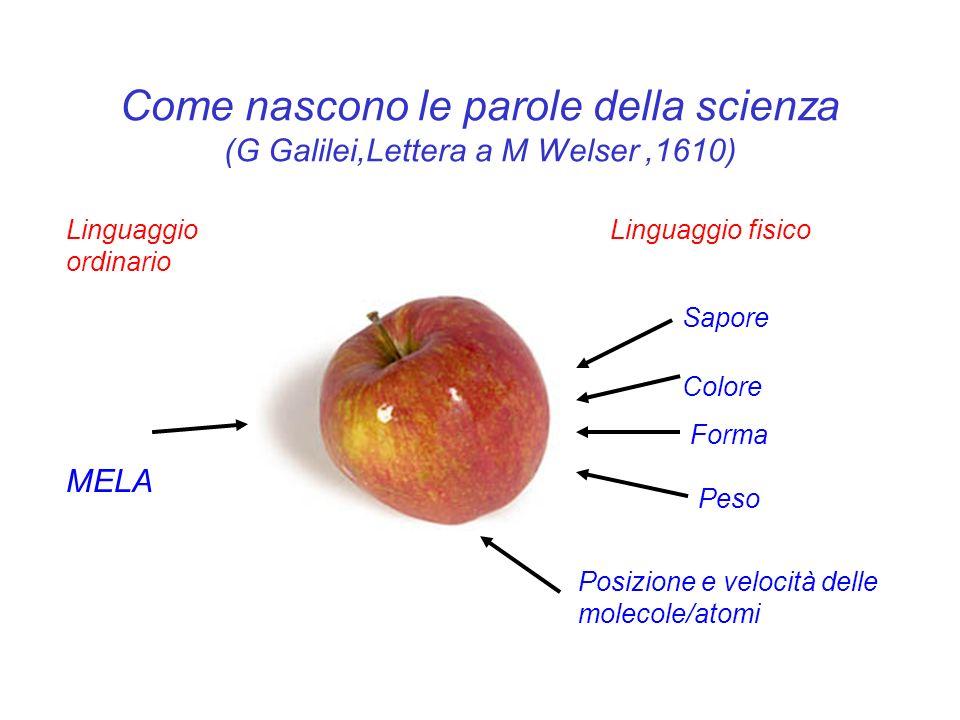 Come nascono le parole della scienza (G Galilei,Lettera a M Welser,1610) MELA Linguaggio ordinario Posizione e velocità delle molecole/atomi Sapore Co