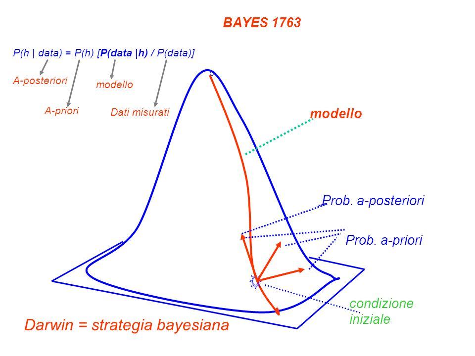 condizione iniziale Prob. a-posteriori Prob. a-priori modello Darwin = strategia bayesiana BAYES 1763 P(h | data) = P(h) [P(data |h) / P(data)] A-post
