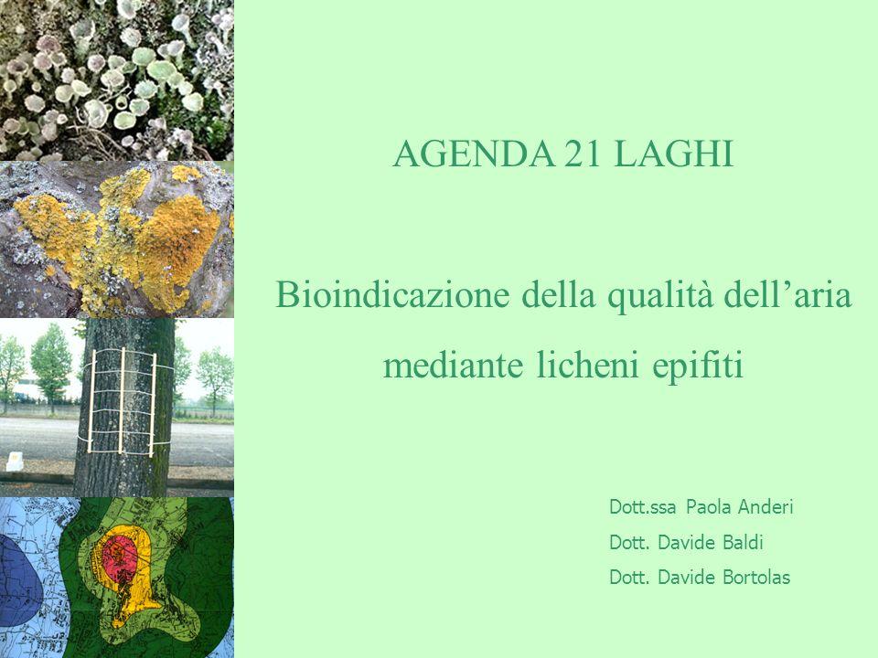 AGENDA 21 LAGHI Bioindicazione della qualità dellaria mediante licheni epifiti Dott.ssa Paola Anderi Dott.