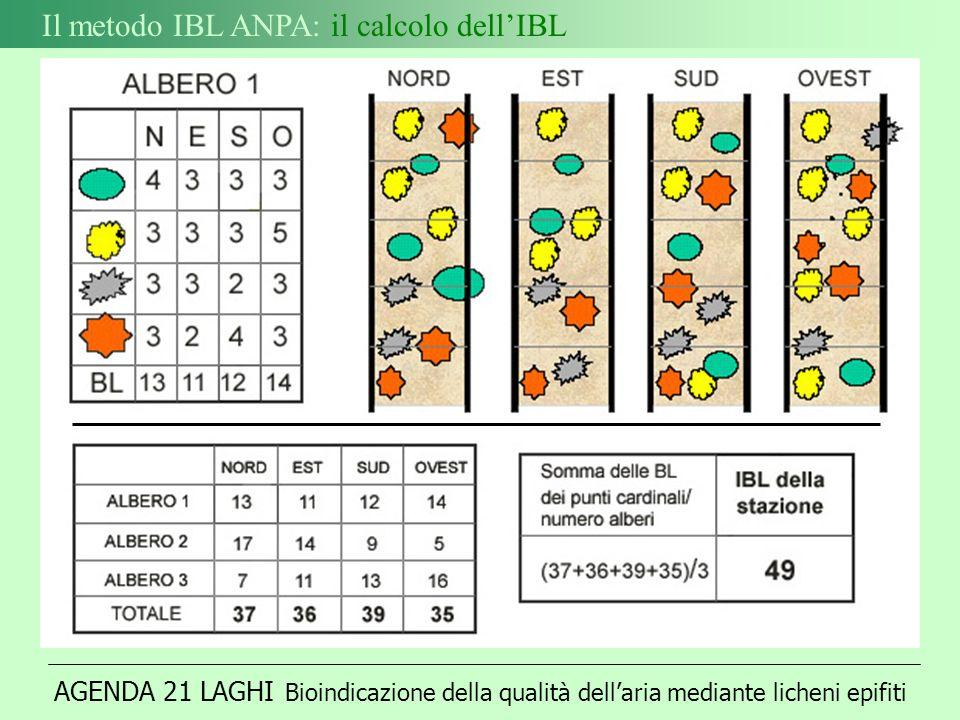 AGENDA 21 LAGHI Bioindicazione della qualità dellaria mediante licheni epifiti Il metodo IBL ANPA: il calcolo dellIBL