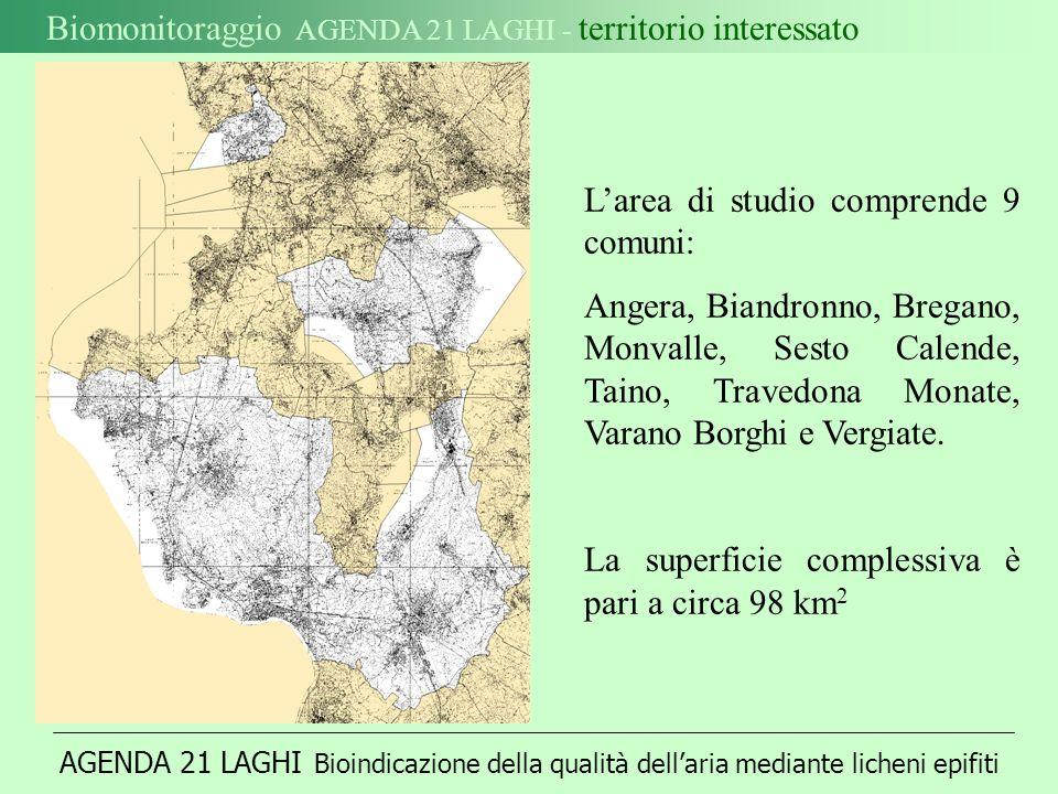 AGENDA 21 LAGHI Bioindicazione della qualità dellaria mediante licheni epifiti Biomonitoraggio AGENDA 21 LAGHI - territorio interessato Larea di studio comprende 9 comuni: Angera, Biandronno, Bregano, Monvalle, Sesto Calende, Taino, Travedona Monate, Varano Borghi e Vergiate.