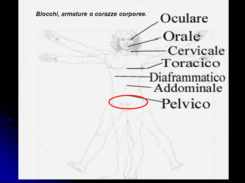 Blocchi, armature o corazze corporee.