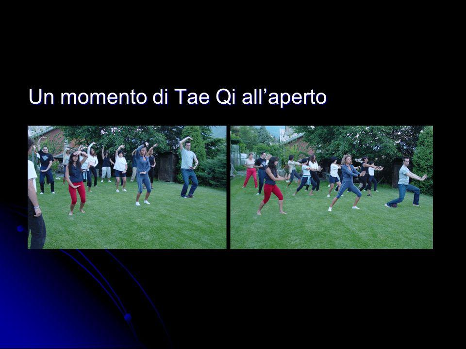 Un momento di Tae Qi allaperto