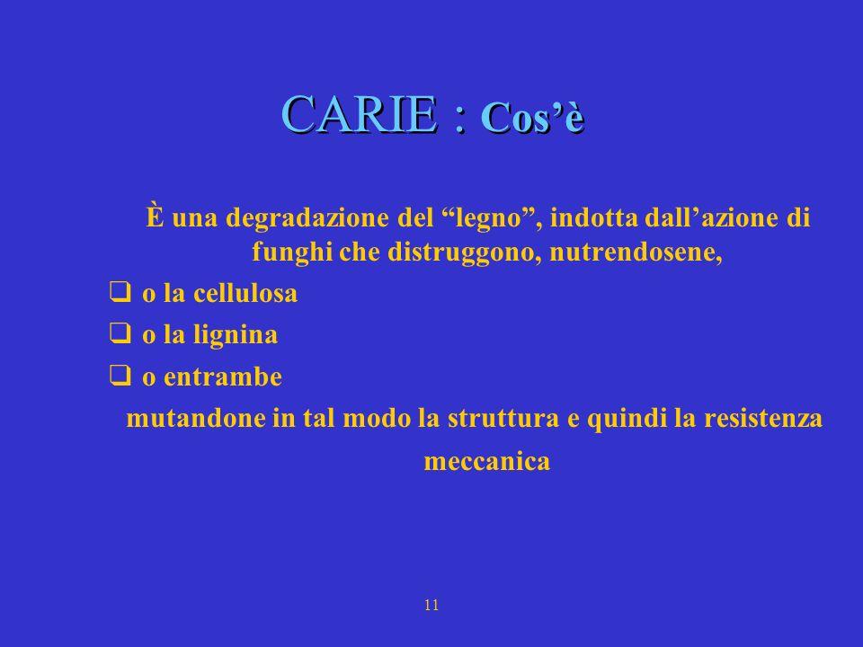 10 CARIE * Cosè - Tipologie * Meccanismo infettivo * Meccanismi naturali di difesa - CODIT * Prevenzione - Artifici di difesa