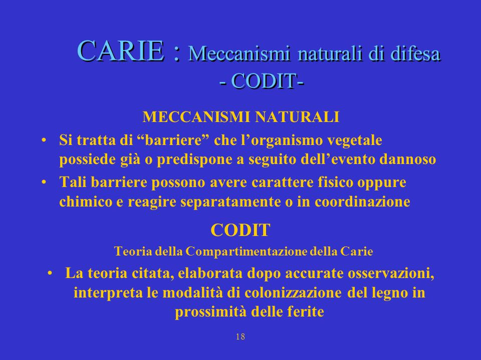 14 CARIE : Meccanismo infettivo CARIE : Meccanismo infettivo Per instaurarsi un processo di carie devono verificarsi le seguenti condizioni: Il legno