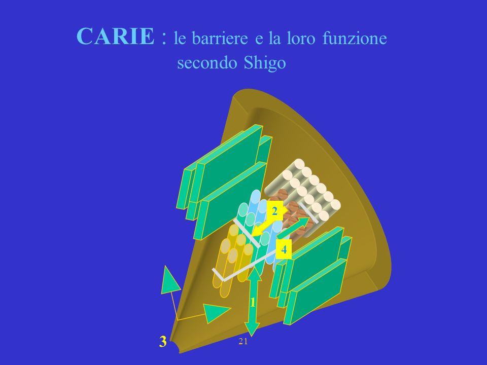 19 CARIE : CODIT Vi sono due terminologie che descrivono e spiegano la formazione delle barriere La I^ si deve a SHIGO e MARK (1977), essa è basata su