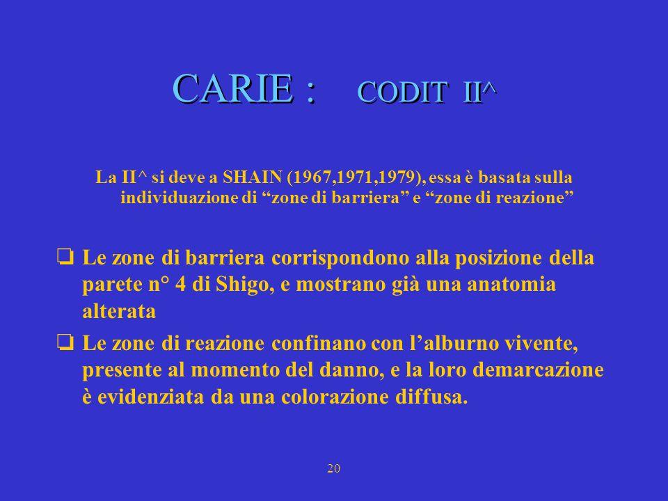21 CARIE : le barriere e la loro funzione secondo Shigo 2 1 4 3 2