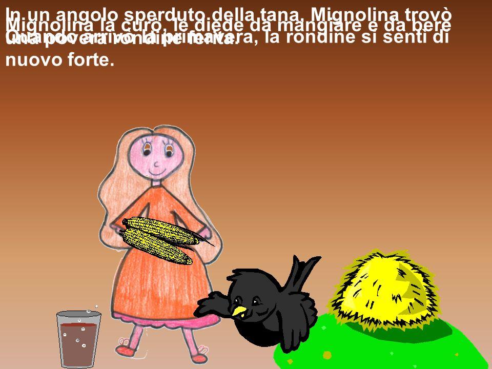 In un angolo sperduto della tana, Mignolina trovò una povera rondine ferita. Mignolina la curò, le diede da mangiare e da bere Quando arrivò la primav