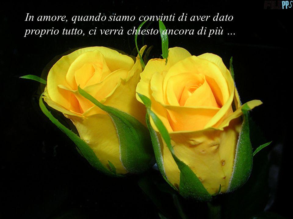 Amare vuol dire dare senza chiedere nulla in cambio … se non amore …
