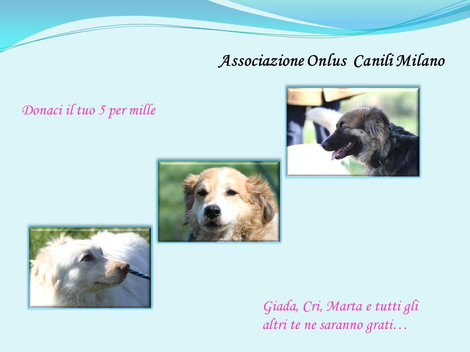 Giada, Cri, Marta e tutti gli altri te ne saranno grati… Donaci il tuo 5 per mille Associazione Onlus Canili Milano