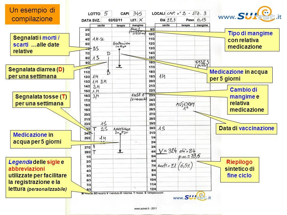 Un esempio di compilazione Segnalati i morti / scarti …alle date relative Segnalata diarrea (D) per una settimana Medicazione in acqua per 5 giorni Ca