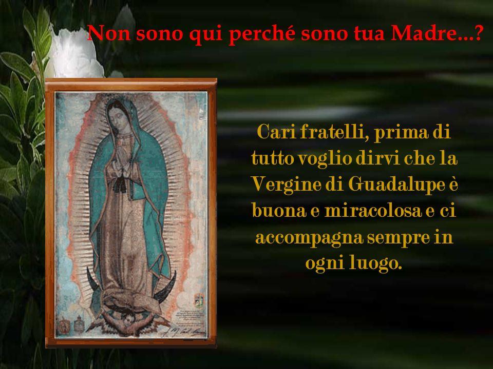 Oh, Santa Madre di Dio, non deludere le suppliche che ti indirizziamo nelle nostre necessità. Non sono qui perché sono tua Madre...?