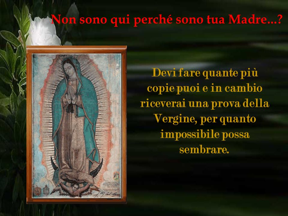 Questo messaggio ha lo scopo di girare il mondo per ricevere miracoli con questa bella catena. Non sono qui perché sono tua Madre...?