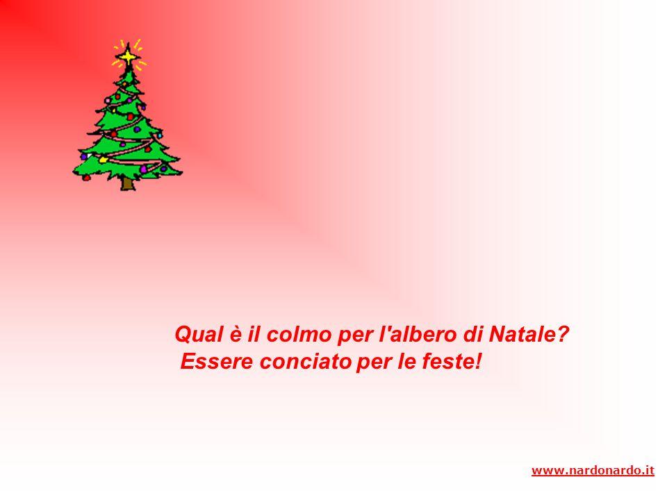 Il natale si avvicina………………….. www.nardonardo.it