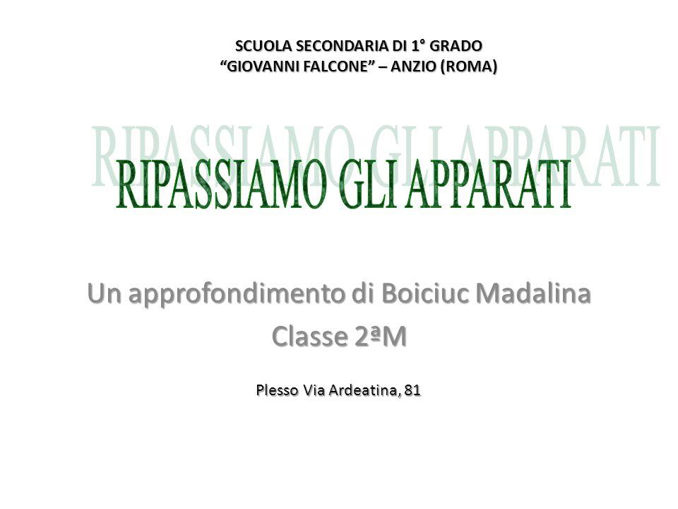 Un approfondimento di Boiciuc Madalina Classe 2ªM SCUOLA SECONDARIA DI 1° GRADO GIOVANNI FALCONE – ANZIO (ROMA) Plesso Via Ardeatina, 81