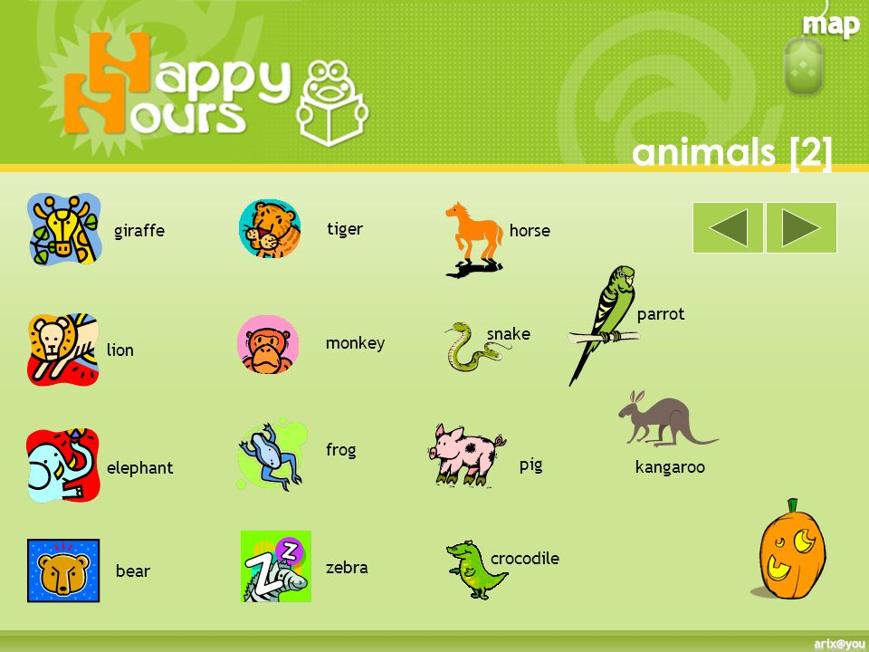 animals [1] dog cat rabbitfish bird budgie hamster goldfish mouse kitten puppy