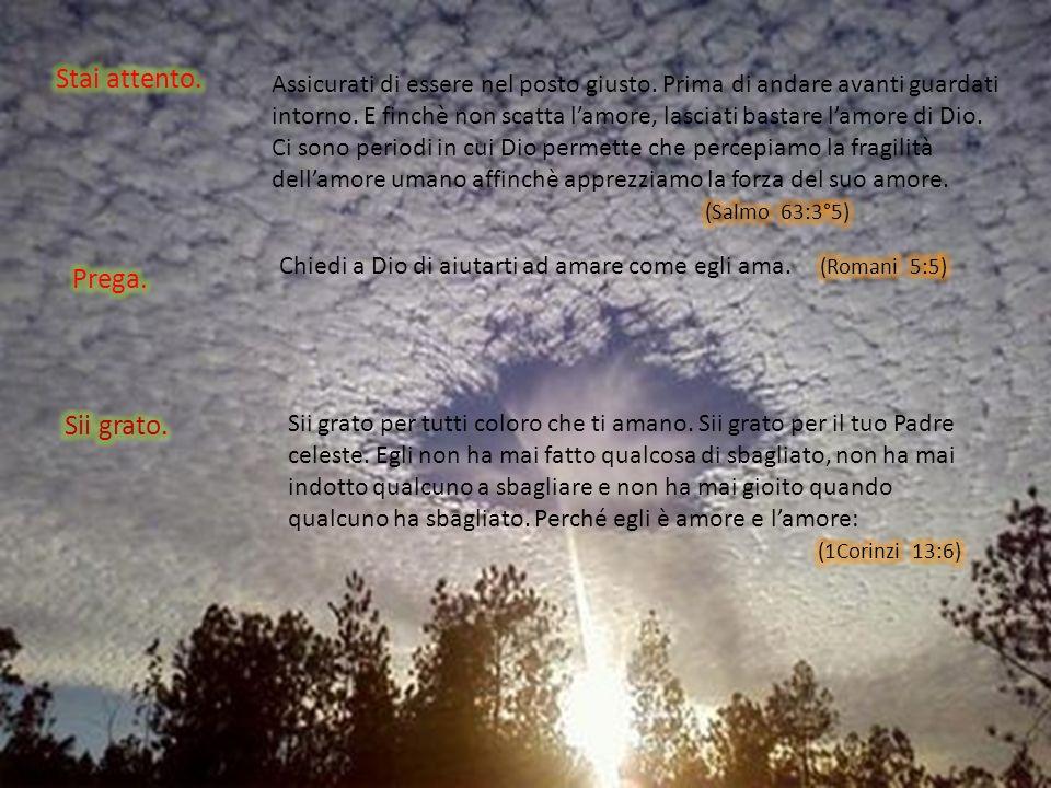 Lamore….soffre ogni cosa,crede ogni cosa,spera ogni cosa,sopporta ogni cosa. (1Corinzi 13:4-7)