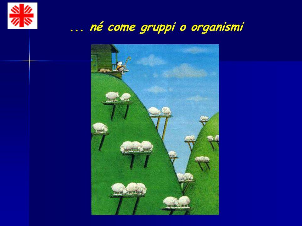 ... né come gruppi o organismi