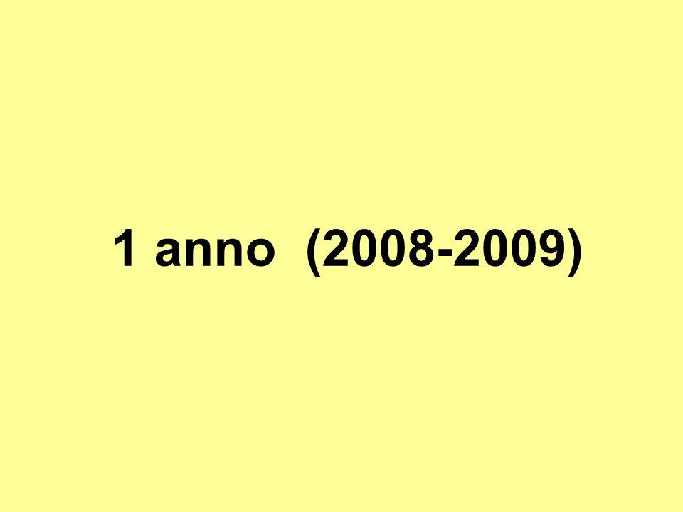 1 anno (2008-2009)