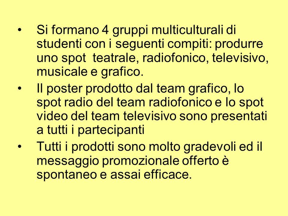 Si formano 4 gruppi multiculturali di studenti con i seguenti compiti: produrre uno spot teatrale, radiofonico, televisivo, musicale e grafico.