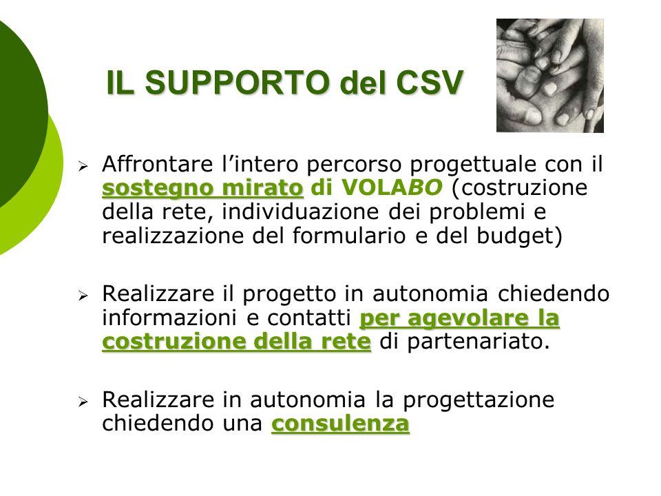 IL SUPPORTO del CSV sostegno mirato Affrontare lintero percorso progettuale con il sostegno mirato di VOLABO (costruzione della rete, individuazione d