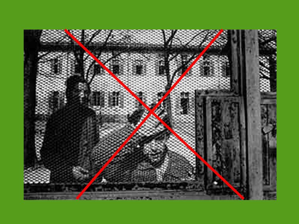 CT L Airone Orvieto - Terni Tempo 1 Invio report autovalutazione Tempo 1 Invio report autovalutazione Tempo 2 Visita della prima comunità da parte delle altre due CT Passaggi Oricola - L Aquila CT Marica Minturno - Latina Tre cicli - Centro