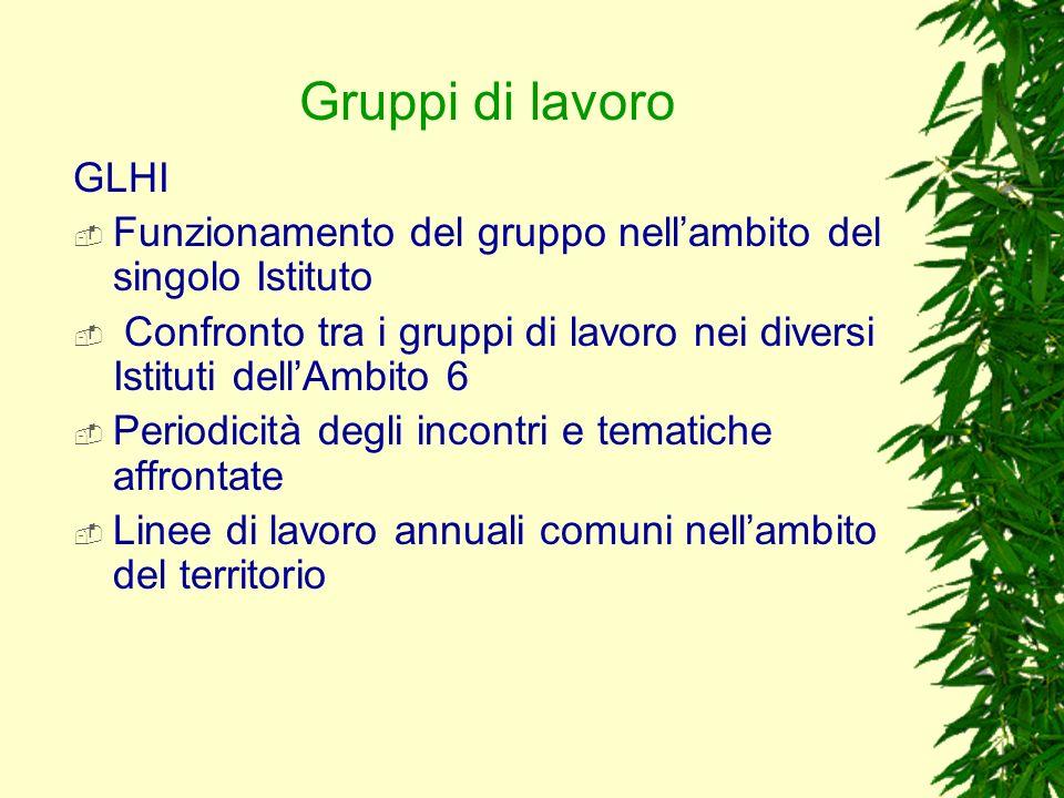 Gruppi di lavoro GLHI Funzionamento del gruppo nellambito del singolo Istituto Confronto tra i gruppi di lavoro nei diversi Istituti dellAmbito 6 Peri