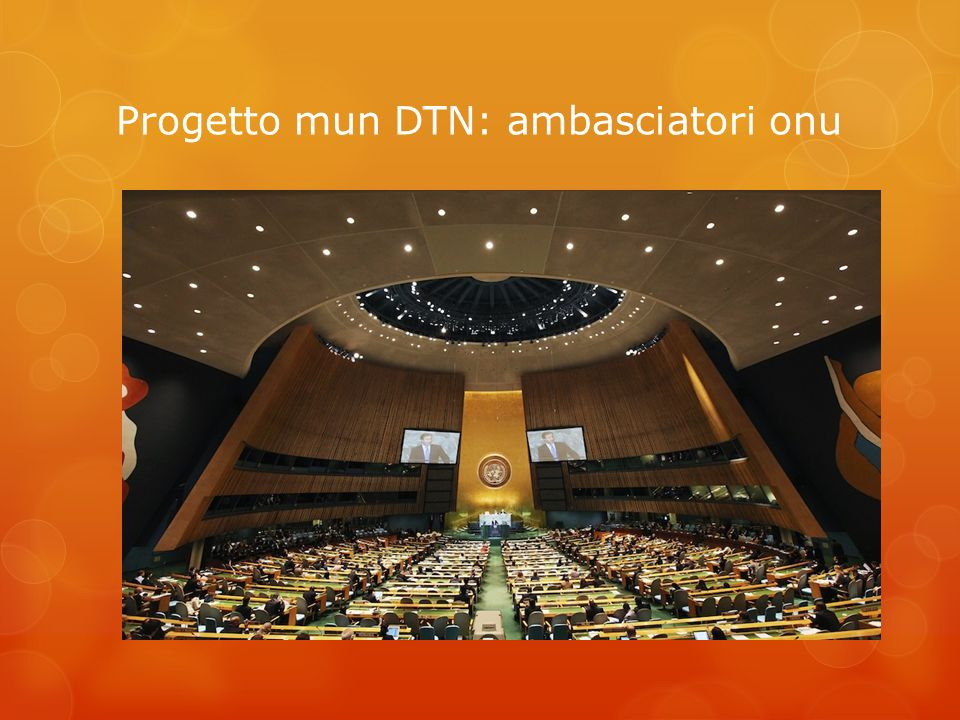 Progetto mun DTN: ambasciatori onu
