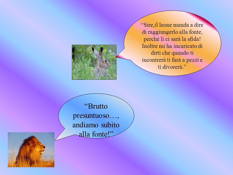 Brutto presuntuoso…, andiamo subito alla fonte! Sire,il leone manda a dire di raggiungerlo alla fonte, perché lì ci sarà la sfida! Inoltre mi ha incar