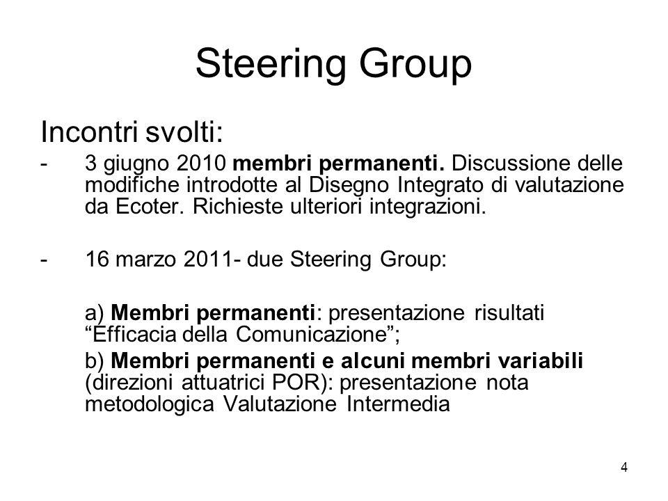 4 Steering Group Incontri svolti: -3 giugno 2010 membri permanenti.