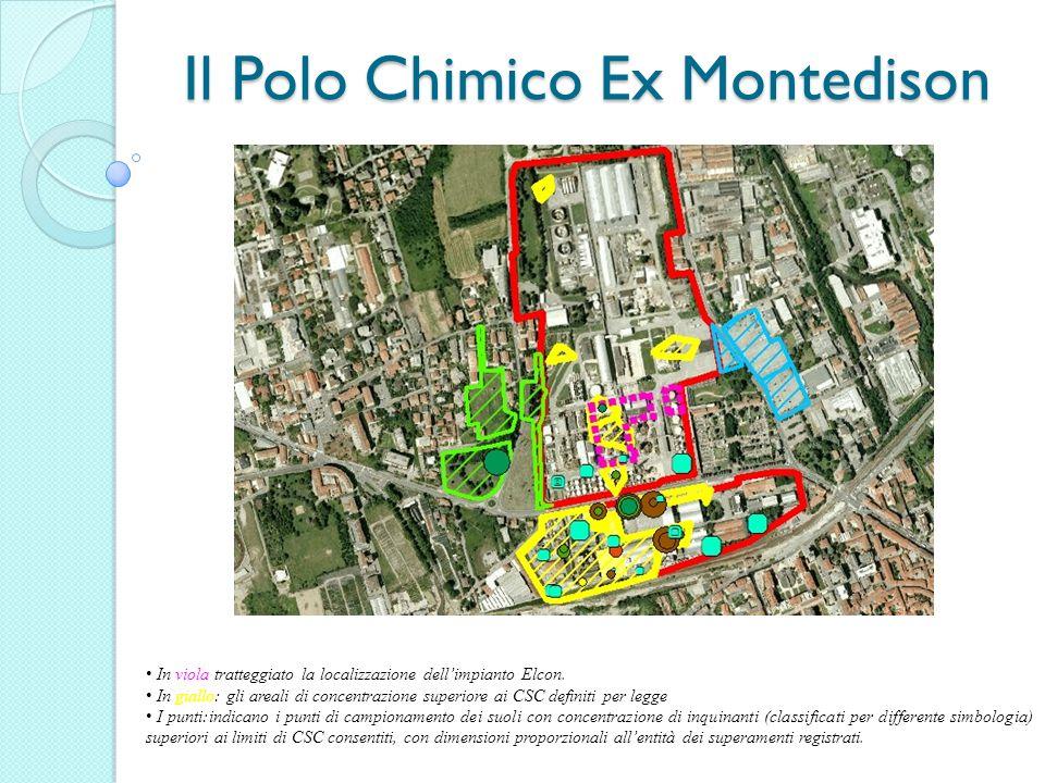 Il Polo Chimico Ex Montedison In viola tratteggiato la localizzazione dellimpianto Elcon. In giallo: gli areali di concentrazione superiore ai CSC def