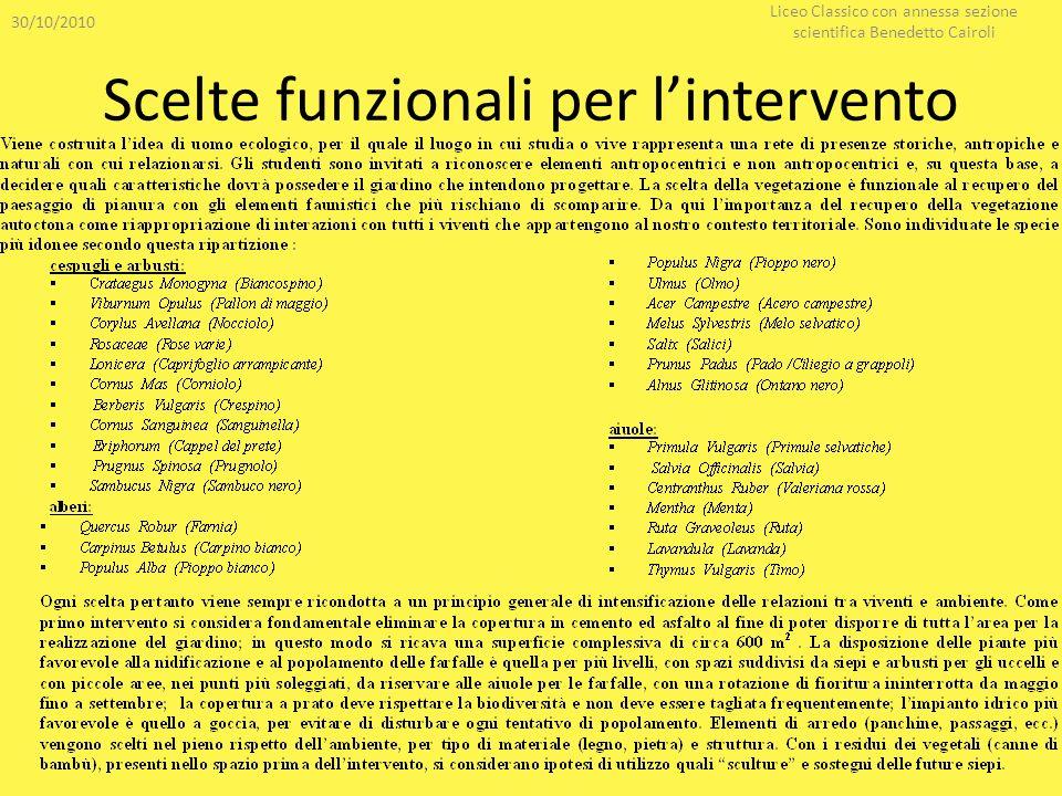 Scelte funzionali per lintervento 30/10/2010 Liceo Classico con annessa sezione scientifica Benedetto Cairoli