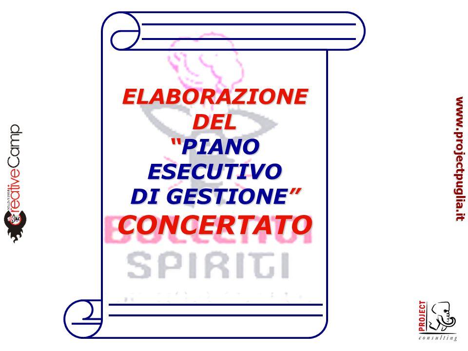 www.projectpuglia.it ELABORAZIONE DEL PIANO ESECUTIVOPIANO ESECUTIVO DI GESTIONE CONCERTATO