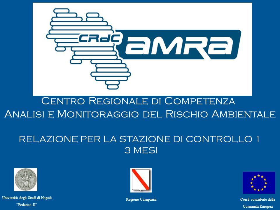 Centro Regionale di Competenza Analisi e Monitoraggio del Rischio Ambientale PROGETTI IN RIMODULAZIONE WP1– S.
