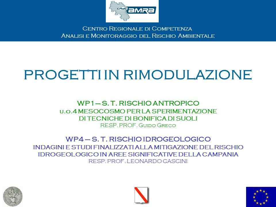 Centro Regionale di Competenza Analisi e Monitoraggio del Rischio Ambientale PROGETTI IN RIMODULAZIONE WP1– S. T. RISCHIO ANTROPICO u.o.4 MESOCOSMO PE
