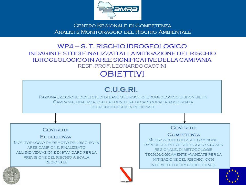 Centro Regionale di Competenza Analisi e Monitoraggio del Rischio Ambientale WP4 – S. T. RISCHIO IDROGEOLOGICO INDAGINI E STUDI FINALIZZATI ALLA MITIG