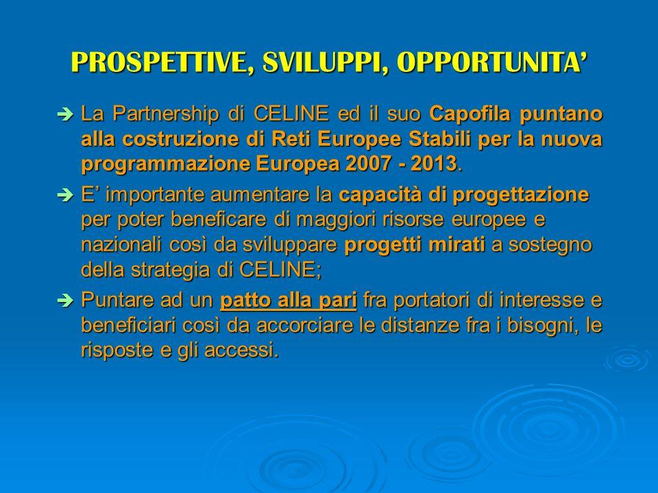 PROSPETTIVE, SVILUPPI, OPPORTUNITA La Partnership di CELINE ed il suo Capofila puntano alla costruzione di Reti Europee Stabili per la nuova programmazione Europea 2007 - 2013.